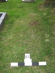 Grass mound, looking west