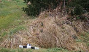 Headstone with kerbs beneath grass